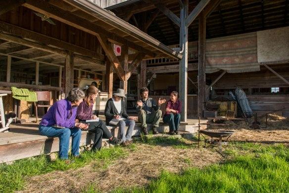Sunnyfield-Farm_1