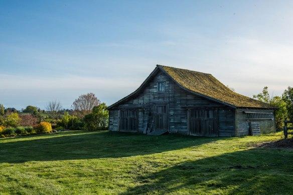Sunnyfield-Farm_2