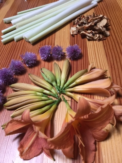 2. cattails, daylily, chive flowers, lobster mushrooms