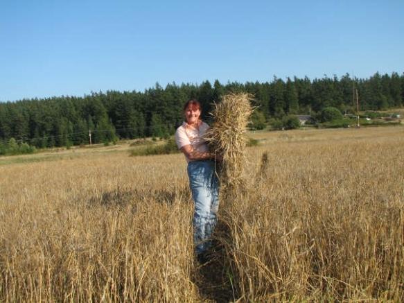 BarleyLandTrustFinal 032[1]
