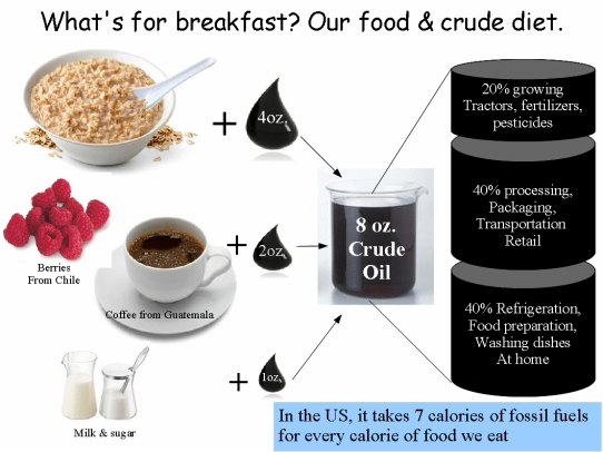 Food and crude diet graphic