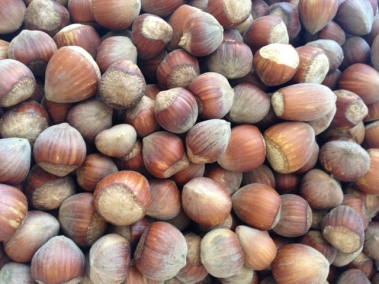 hazelnuts from Ronni and Levi's farm