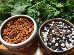 Irene's beans