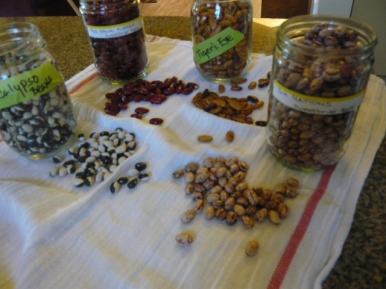 Local beans - jewels of the pantry